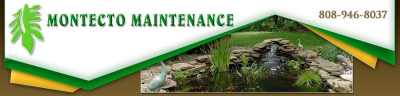 Montecto Maintenance